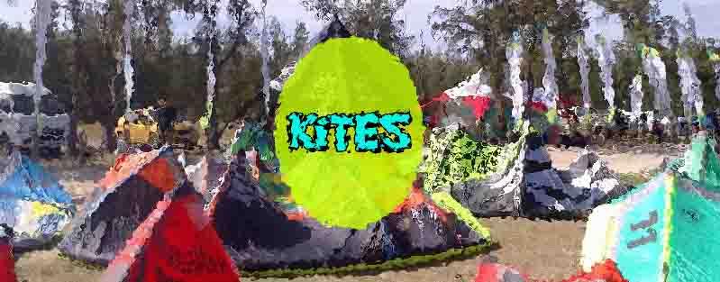 Kitesurf come scegliere l'attrezzatura giusta kite ali Acquilone